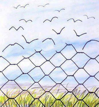 Hayat kısa, kuşlar uçuyor...