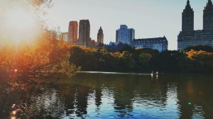 Central Park/ @silverland